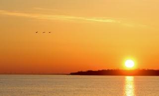 Morning sunrise in Michigan.