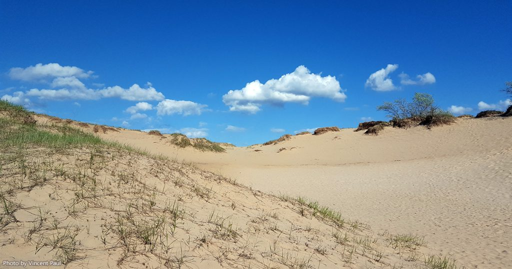 The sand dunes at Kohler-Andrae State Park.