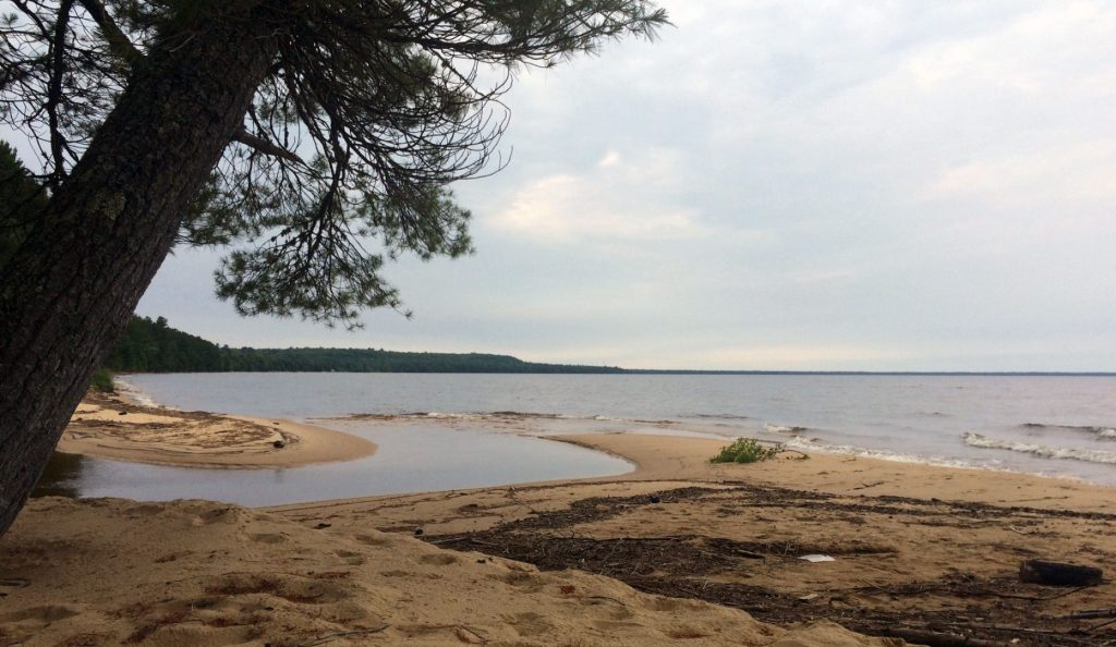 Camping spot 9 miles from Paradise, Michigan at Roxbury Creek.