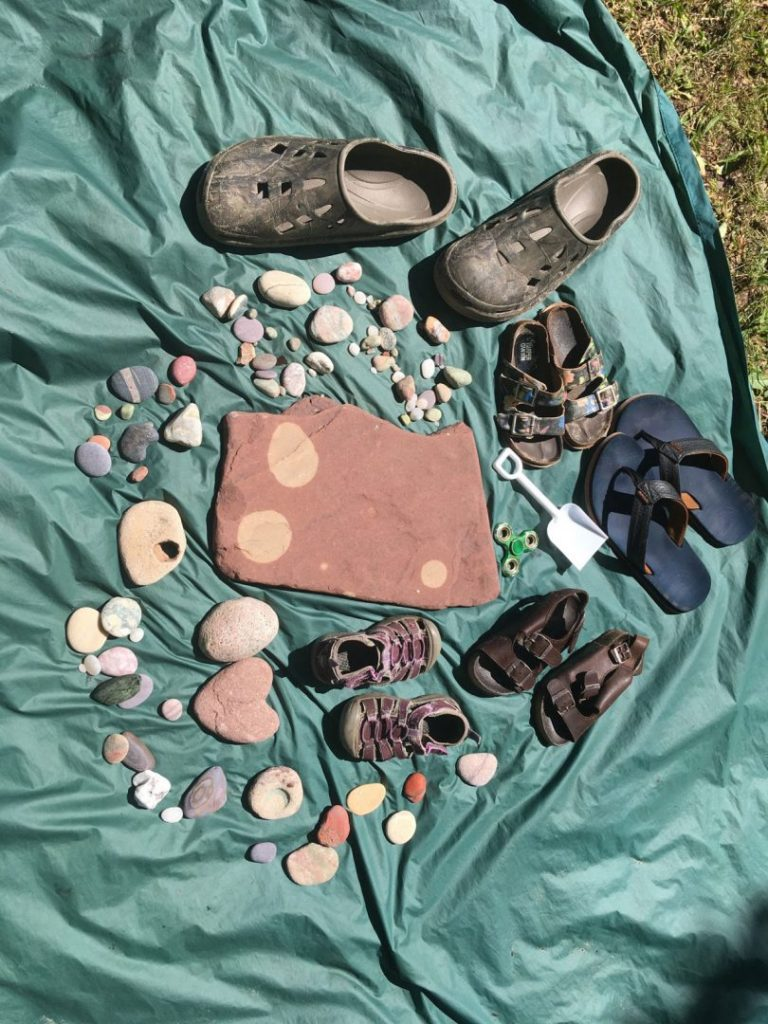 Peggy's finds in Northern Michigan. Mostly rocks.