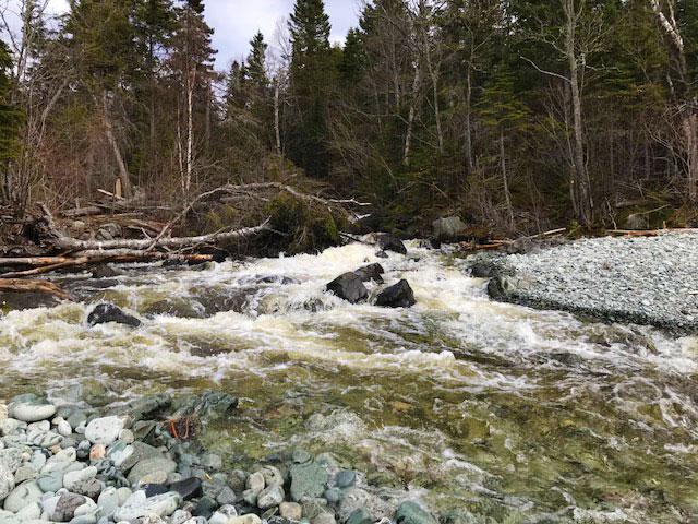 Creek near Wawa, Ontario, Canada.